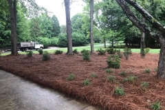 Greensboro-NC-landscape-services