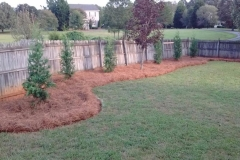landscaping-service-Greensboro