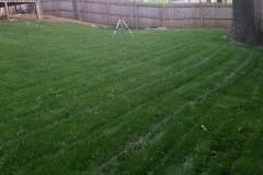 Greensboro-North-Carolina-landscaping-companies