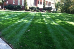 landscaping-Greensboro-North-Carolina